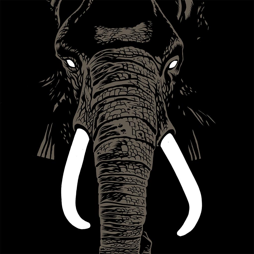 BRÜNO ELEPHANT SERIGRAPHIE 50X50CM 69 EUR